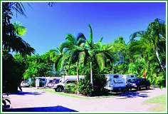 Tropical Hibiscus Caravan Park - Carnarvon Accommodation