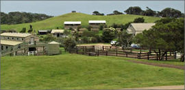 Ace Hi Riding Ranch - Carnarvon Accommodation