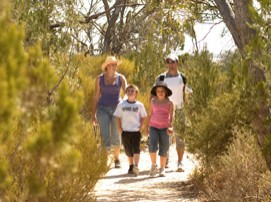 Long Island Caravan Park Cabins - Carnarvon Accommodation