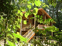 Rivers Edge Rainforest Retreat - Carnarvon Accommodation