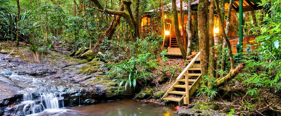 The Mouses House - Rainforest Retreat - Carnarvon Accommodation