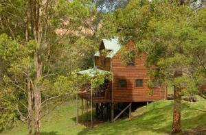 Hookes Creek Forest Retreat - Carnarvon Accommodation
