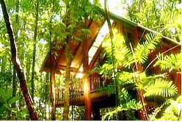 The Canopy Treehouses - Carnarvon Accommodation