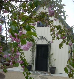 Silverleaf Cottage - Carnarvon Accommodation