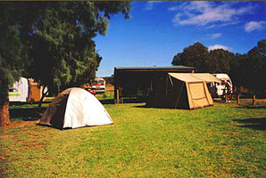 Princes Hwy Caravan Park - Carnarvon Accommodation