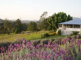 Blue Ridge Lavender Farm And Retreat - Carnarvon Accommodation
