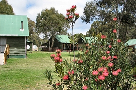 Derwent Bridge Chalets  Studios - Carnarvon Accommodation
