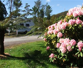 Zeehan Bush Camp  and Caravan Park - Carnarvon Accommodation