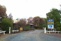 Ace Caravan Park - Carnarvon Accommodation