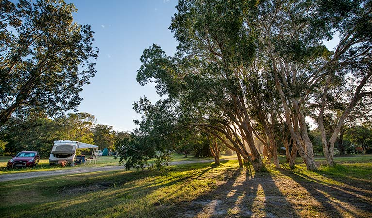 Delicate campground - Carnarvon Accommodation