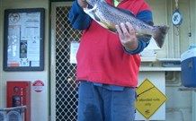 Rainbow Pines Tourist Caravan Park - Carnarvon Accommodation