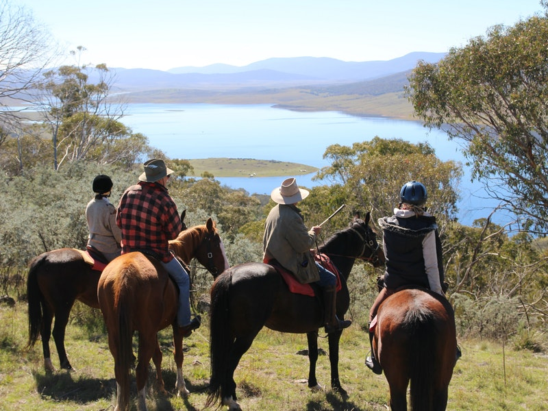 Reynella Homestead and Horseback Rides - Carnarvon Accommodation