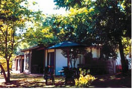 Forest Lodge - Carnarvon Accommodation
