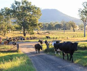Tommerups Dairy Farmstay - Carnarvon Accommodation
