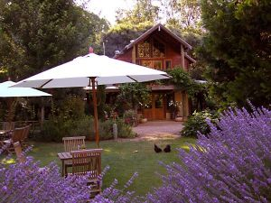 Lavender Hue - Carnarvon Accommodation
