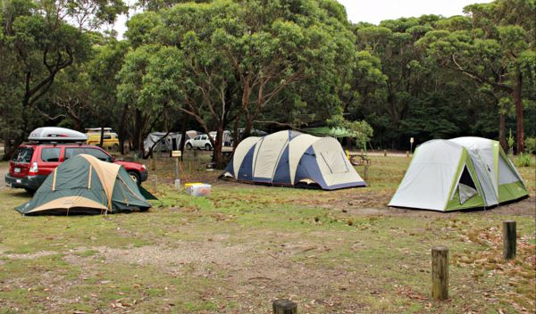 Pretty Beach Campground Murramarang National Park - Carnarvon Accommodation
