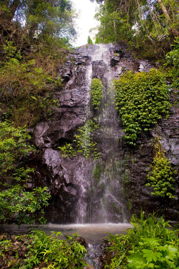 Nimbin waterfall retreat - Carnarvon Accommodation