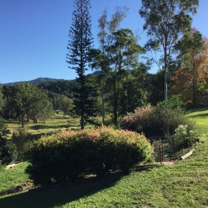 The Croft Bed and Breakfast - Carnarvon Accommodation