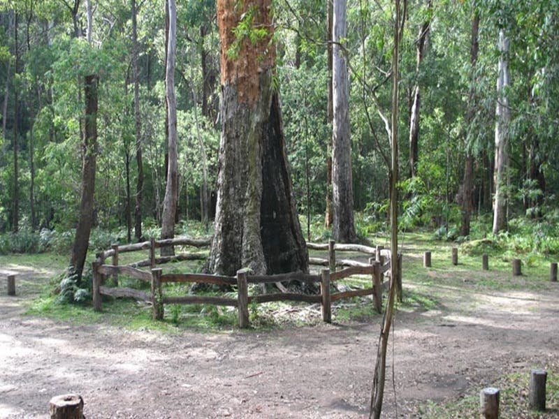 Six Mile Creek campground - Carnarvon Accommodation