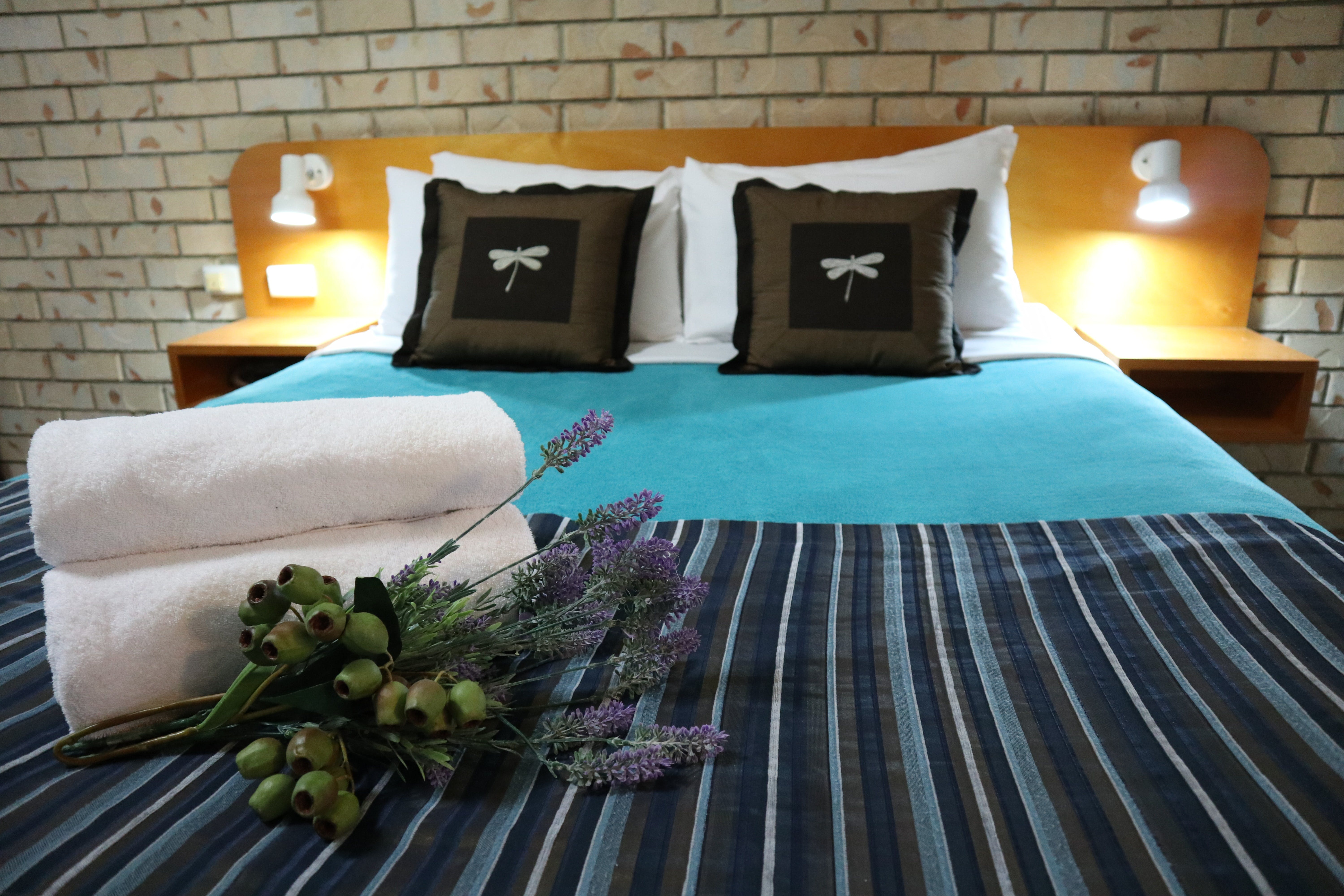 Kilcoy Gardens Motel - Carnarvon Accommodation