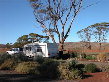 Fraser Range Sheep Station - Carnarvon Accommodation