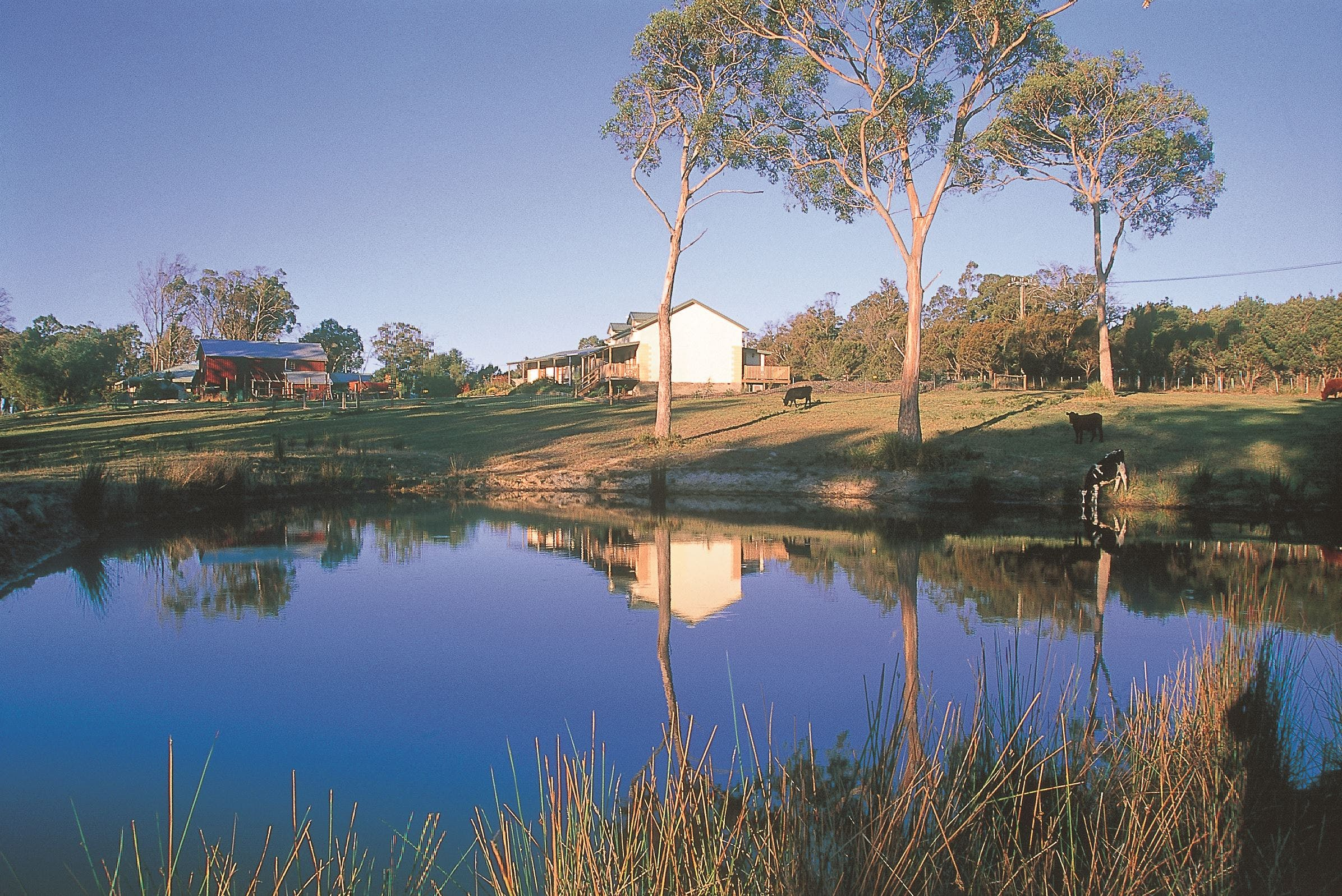 Platypus Park Country Retreat - Carnarvon Accommodation