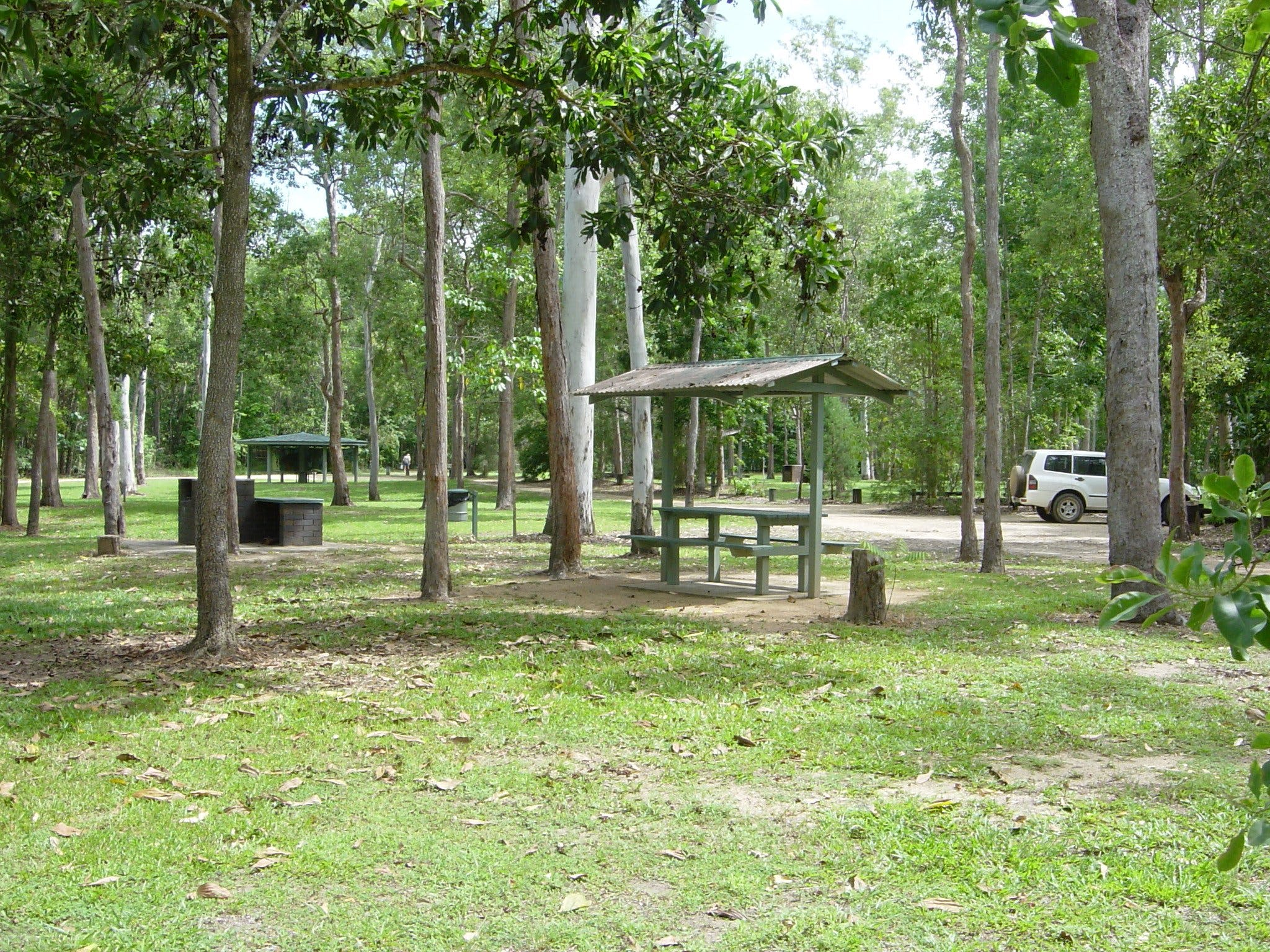 Broadwater camping area Abergowrie State Forest - Carnarvon Accommodation