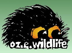 OZe Wildlife - Carnarvon Accommodation