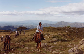 High Country Horses - Carnarvon Accommodation