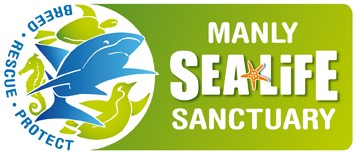 Manly SEA LIFE Sanctuary - Carnarvon Accommodation