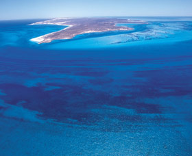 Dirk Hartog Island - Carnarvon Accommodation