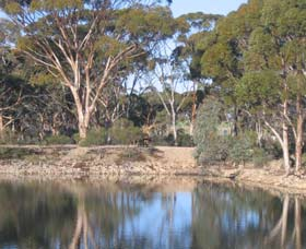 Merredin Railway Dam - Carnarvon Accommodation