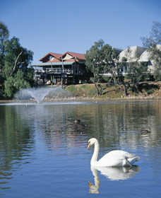 White Swans - Carnarvon Accommodation