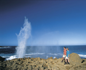 The Blowholes Carnarvon - Carnarvon Accommodation