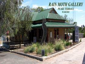 Rain Moth Gallery - Carnarvon Accommodation