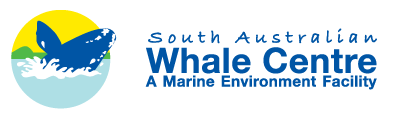 South Australian Whale Centre - Carnarvon Accommodation