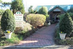 Two Oaks Nursery Gallery and Cafe - Carnarvon Accommodation
