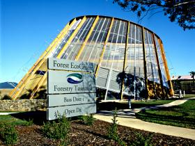 Forest EcoCentre - Carnarvon Accommodation
