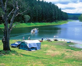 Danbulla National Park and Danbulla State Forest - Carnarvon Accommodation