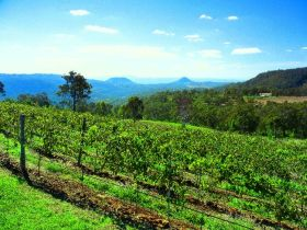 Preston Peak Wines - Carnarvon Accommodation