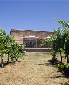 Shantell Vineyard - Carnarvon Accommodation