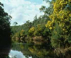 Warrandyte State Park - Carnarvon Accommodation