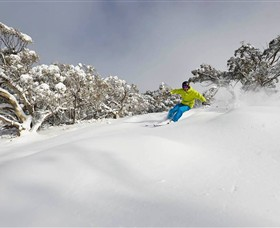 Mt Buller and Mt Stirling Alpine Resort - Carnarvon Accommodation