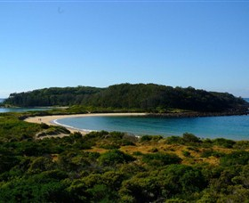 Broulee Island Walk - Carnarvon Accommodation