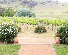Brindabella Hills Winery - Carnarvon Accommodation