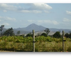 Ironbark Ridge Vineyard - Carnarvon Accommodation
