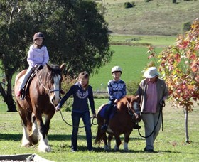 Bathurst Farm Experience - Carnarvon Accommodation