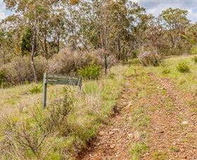 Old Mountain Road Walking Track - Carnarvon Accommodation
