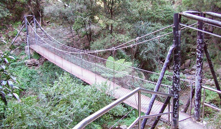 Jenolan River walking track - Carnarvon Accommodation