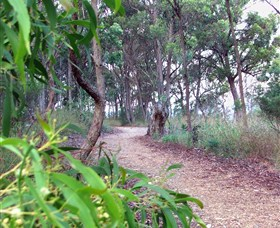 Mount Mutton Walking Trail - Carnarvon Accommodation